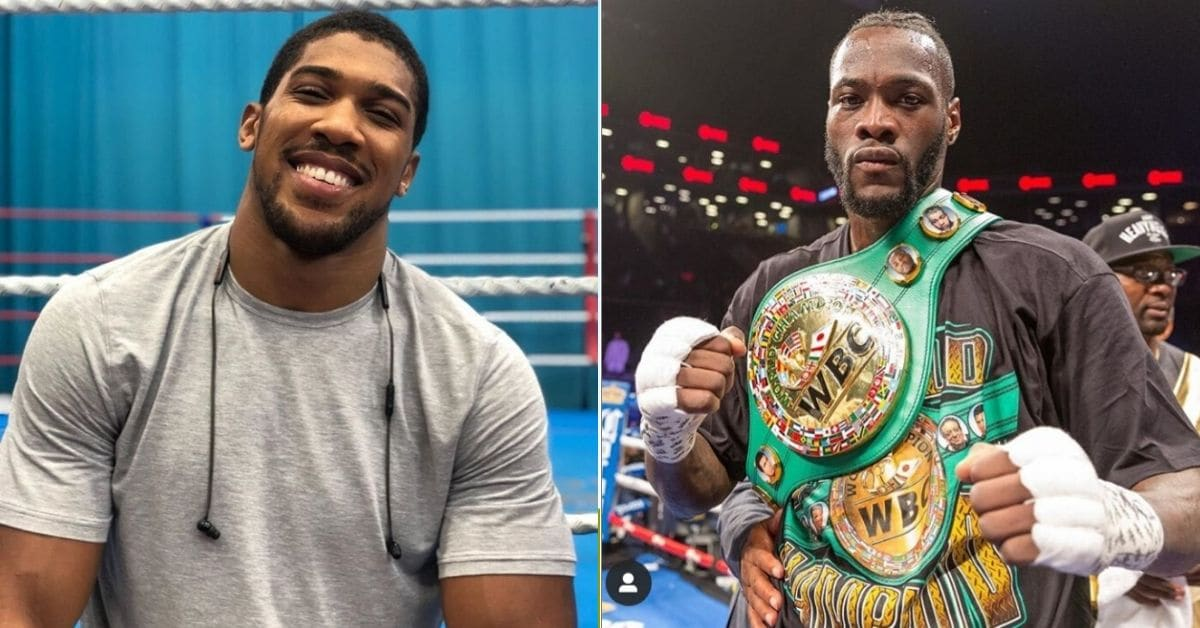 fans-predict-deontay-wilder-knockout